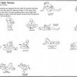 LOWER BACK MUSCLE STRAIN  2